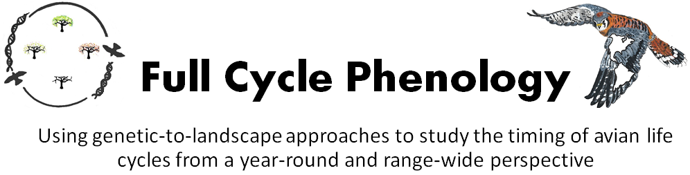 Full Cycle Phenology