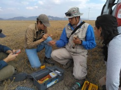 Dayan processes a kestrel, assisted by Kashmir and Diana