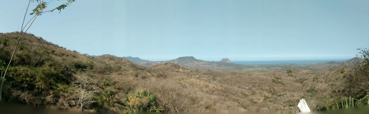 Spotting kestrels in high elevations in the mountains near Coatepec, Veracruz